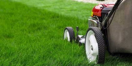 Bryan Texas Professional Lawn Care Services